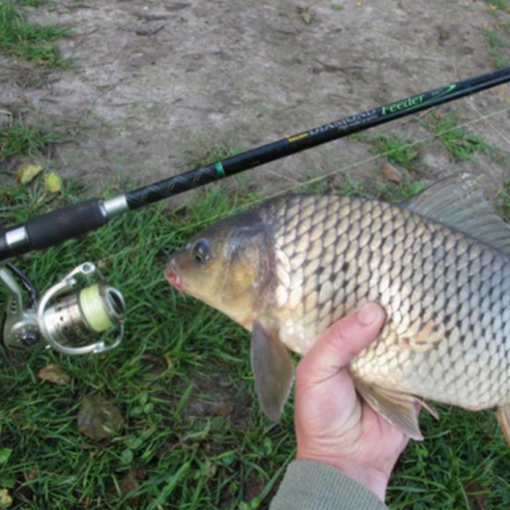 Рыбалка на удочку в мае видео - Охота и рыбалка в России и за рубежом
