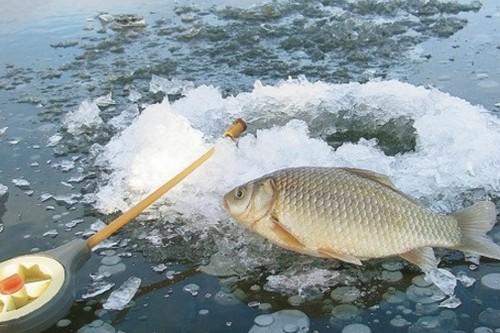 Удочки для рыбалки зимой на пруду.